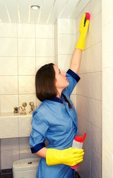 Milton Home Cleaners
